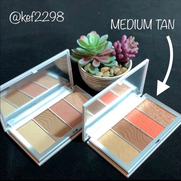 PUR 4-IN-1 SKIN PERFECTING POWDERS FACE PALETTE